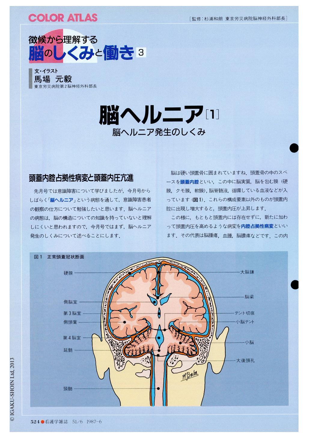 と 脳 は ヘルニア 脳ヘルニアとは〜種類、症状、兆候、余命、回復などの簡単まとめ